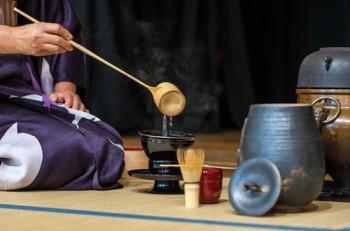 I  benefici degli infusi, tisane e thè naturali